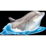 """Група """"Дельфінята"""""""