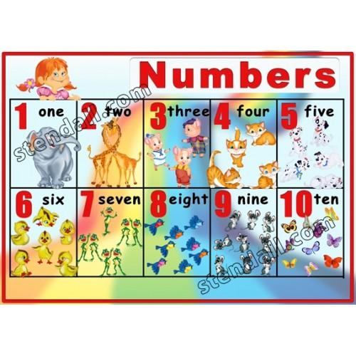 Стенд Numbers из пластика 11