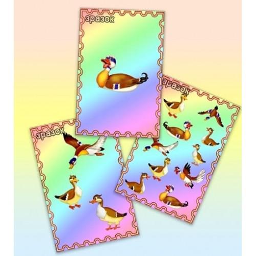 магнит виниловий качка 42