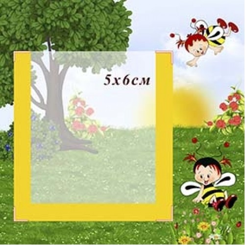 табличка на шафку в дитячий садок з кишенею бджілка  6